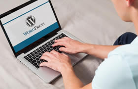 Curso de WordPress - Criação de sites e blogs usando o WordPress